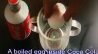 (視頻)蛋可樂實驗,多喝小心會致命