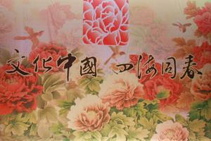 [直播]2013全球华人新春晚会