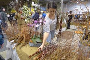 【视频】春的气息:海军码头花卉园艺展