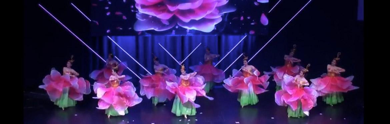 2018 2 文化中国 华星闪耀 牡丹花开 ,飞雪踏歌