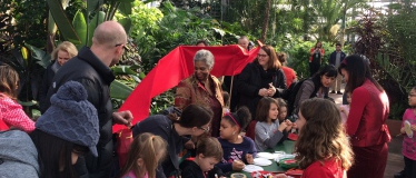 Garfield Park Conservatory's annual Chinese New Year Celebration