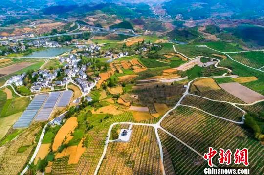 """海外华文媒体:贵州走""""绿色致富路""""经验值得借鉴"""
